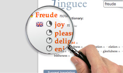 linguee dictionary for german french spanish and more